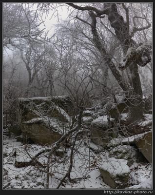 Легенда о Сонной лощине Лощина зима кавказ