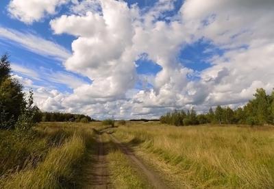 Сибирские дали... Сибирь лето август 2020 пейзаж