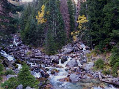 Горная река Бурный горный поток шумливый веселый