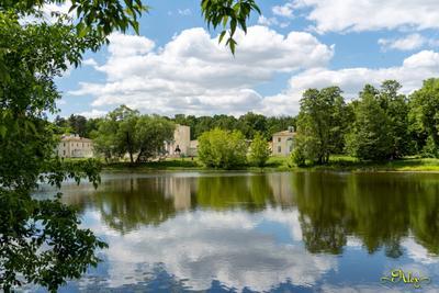 Конный двор в Кузьминках Кузьминский парк пруд природа пейзаж Конный двор облака