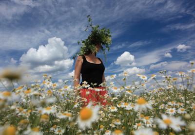 Берег лета девушка лето облака синева ромашки ока цветы июль жить