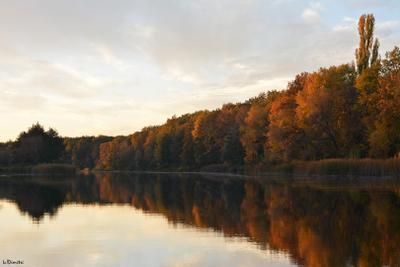 Осенняя река особенно красива Усманка закат осень