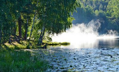 Утро на озере......