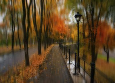 Дождливый октябрь Осень октябрь дождь парк