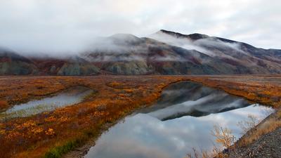 Осенняя. чукотка осень пейзаж сопки облака отражение природа