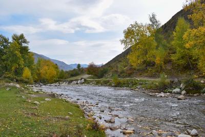 Ильгумень,хмурый день Горный Алтай пейзаж реки Ильгумень nataly-teplyakov