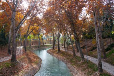 Ташкент в ноябре