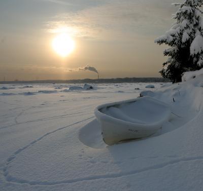 зимние следы