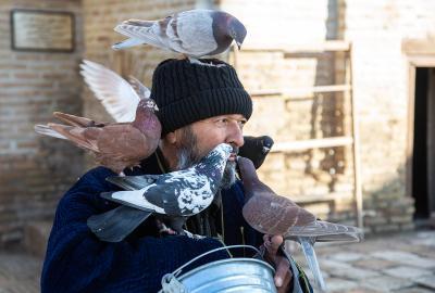 *** Узбекистан Чор-Бакр голуби мулла