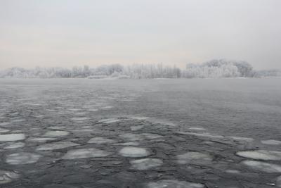 Пейзаж в серых тонах. лёд иней