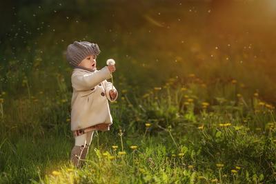 Мила и одуванчики девочка одуванчики весна пальто берет