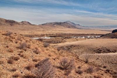 Краски закончились сопки река пейзаж Монголия кусты берега