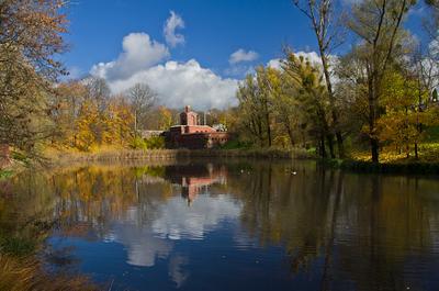 Осенний Калининград Пейзаж город осень парк пруд деревья облака небо