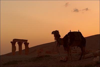 Сирия. Закат в пустыне.