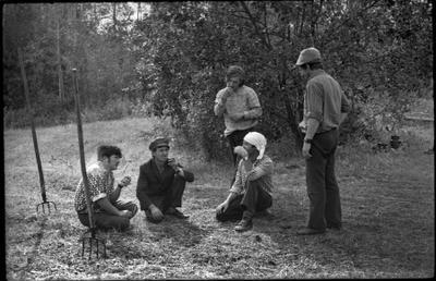 ПЕРЕКУР покос сельская жизнь крестьяне сельский быт архив совхоз колхоз деревня