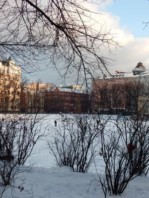 Зима на Патриарших прудах Патриаршие пруды Москва город Новый год замерзший пруд