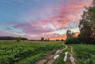 *** поле лес лужи вечер закат дорога облака май березы