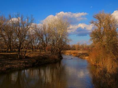 Река в начале весны...