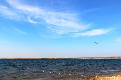 Караджинская бухта крым оленевка кара-мрун бухта караджинская