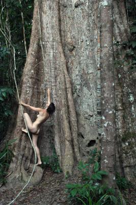 большое дерево 2 девушка дерево