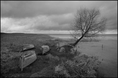 Поздняя осень на Плещейке Плещеево озеро Переславль-Залесский лодки осень сумрак облачно