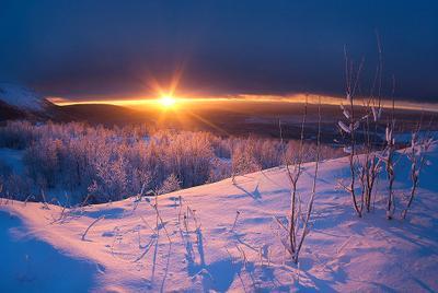 декабрьское солнце