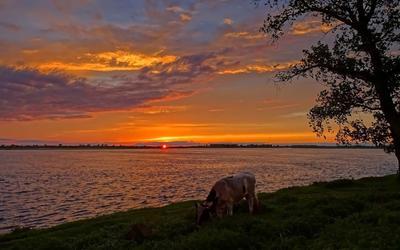 Обской закат Сибирь река Обь закат пейзаж