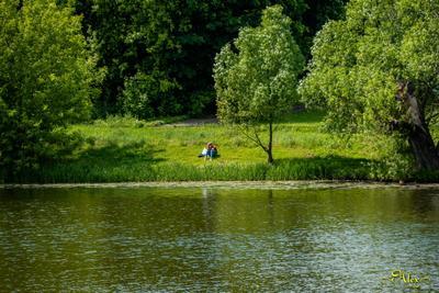 *** пруд Парк Кузьминки природа девушка вода пейзаж