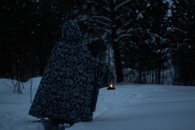 Бредущая в сумерках лес зима сумерки снег девушка фонарь