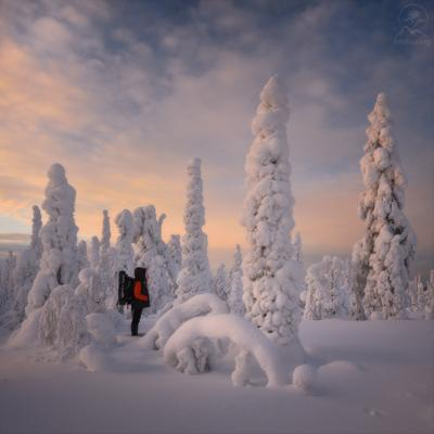 Прогулки по зиме