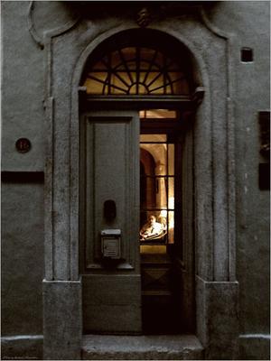 *Один дома* фотография путешествие Мальта Гозо Виктория город вечер жанр портрет Фото.Сайт Светлана Мамакина Lihgra Adventure