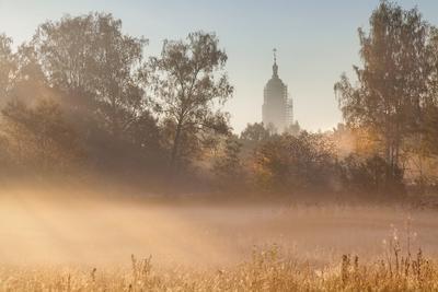 снова осень, снова туман...