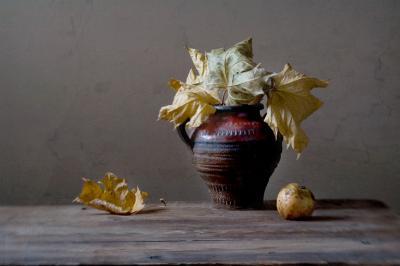 Этюд с кленовыми листьями