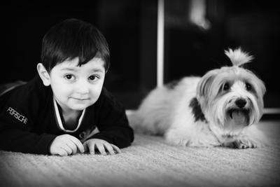 friends дети домашние животные милый дом