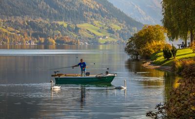 Рыбак и лебеди: совместная рыбалка-2 Австрия горы Альпы озеро Цель Ам Зее лебеди рыбак лодка