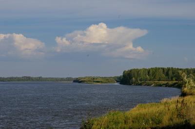 Сибирское лето сибирь лето река чулым