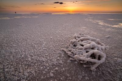 Скульптуры соленого озера Волгоградская область Озеро Эльтон соль