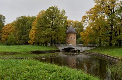Осенний Павловск СПб Павловск парк пейзаж осень