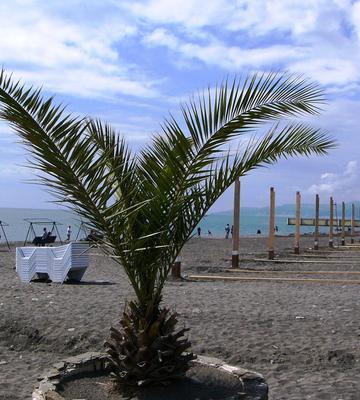 На пляже в мае. сочи пляж