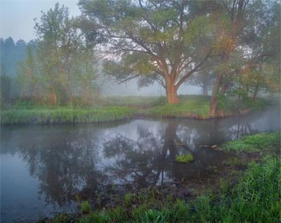 Весеннее Утро утро весна туман река Sony A7R SEL2470Z