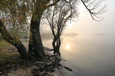 Осень можайское водохранилище