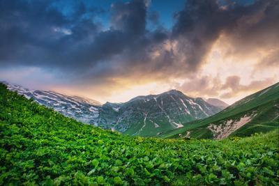 Закатный Фишт и сочная поляна вечер горы фишт оштен адыгея лагонаки путешествие восхождение россия отпуск поход облака закат краски поляна зелень сочность ледник
