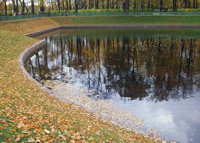 Осеннее настроение осень пруд листва отражения