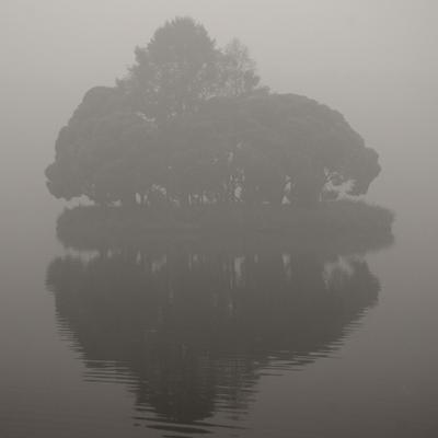 * царицыно, смог, туман, остров