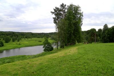 Перед дождем лето река панорама