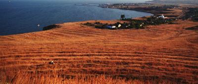 Керченский полуостров. пленка крым керчь nikon f2