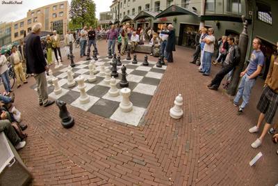 лошадь - ёк шахматы аместердам amster