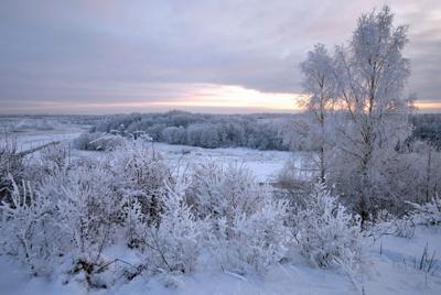 Зимний вечер. Зима снег мороз иней вечер