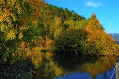 Тихая заводь байкал озеро большие коты листвянка
