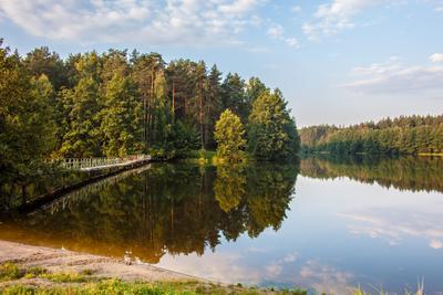 Тишина... природа Егорьевск озеро лето